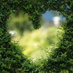 Piękny oraz zadbany ogród to zasługa wielu godzin spędzonych  w jego zaciszu w toku pielegnacji.